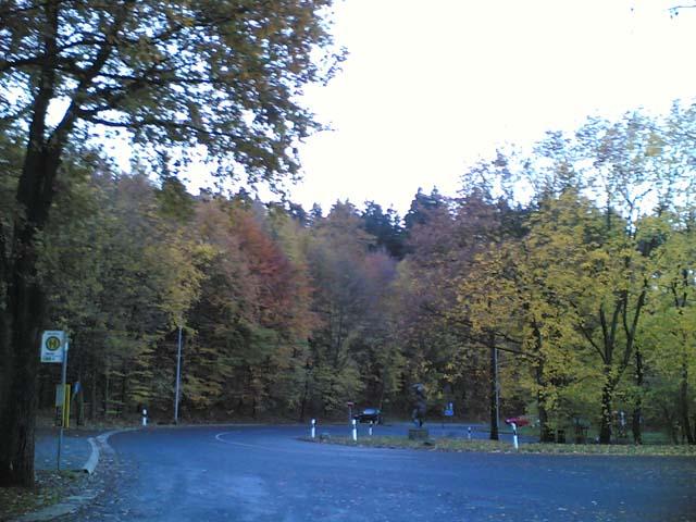 Wald und Parkplatz