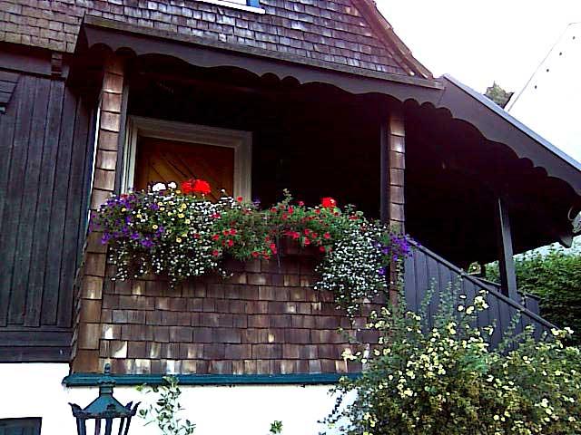 Braunsberg Holzhaus