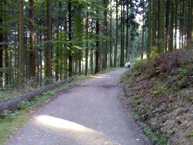 2vor_witzbaum17102006