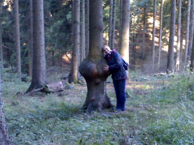 4witzbaum_2_17102006